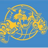 585 Bobcats