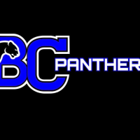 Bullcity panthers