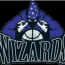 Maryland Wizards