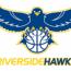 Riverside Hawks 9U