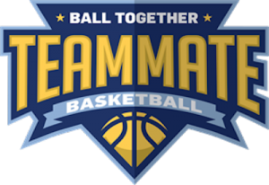 NSID Partners with Teammate Basketball