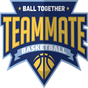 Temmate Basketball Partners with NSID