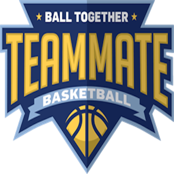 <h2><strong>Teammate <br>Basketball</strong></h2>