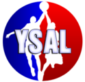<h2><strong>Youth Sports<br>Athletic League</strong></h2>