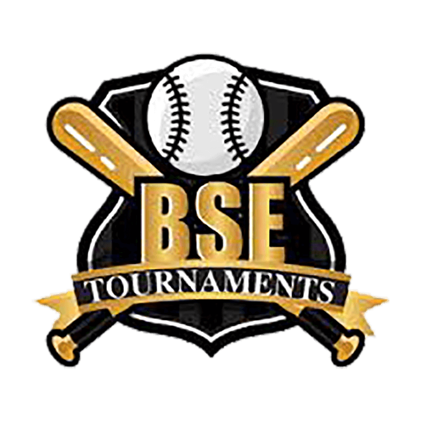 <h2><strong>BSE Baseball<br>Tournaments</strong></h2>