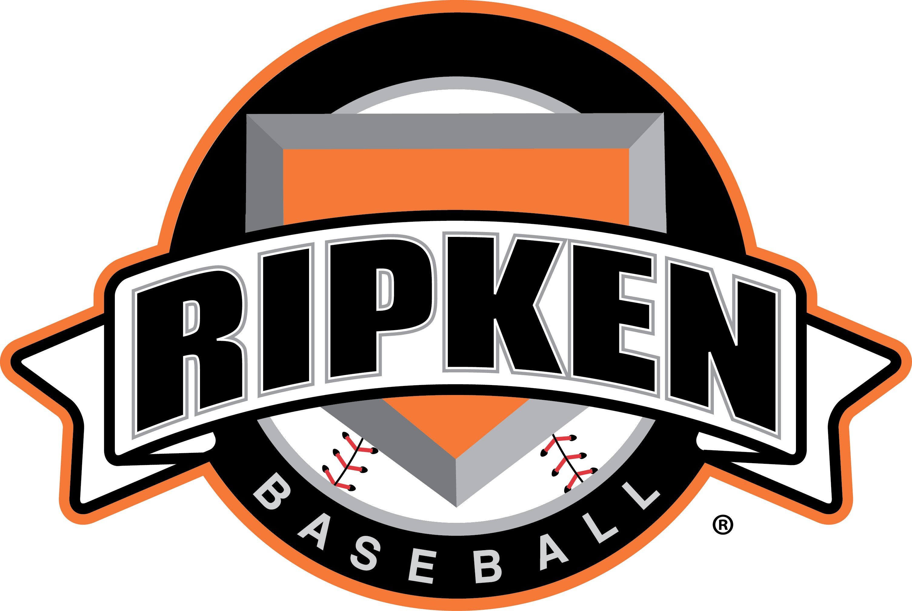 <h2><strong>Ripken Basketball<br>Experience</strong></h2>
